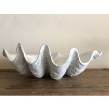 WHITE CLAM MEDIUM 52cm  **AVAILABLE JULY 2020 - PRE-ORDER OPEN NOW**
